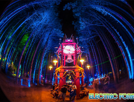 Volunteer Dies On Last Night of Electric Forest Festival