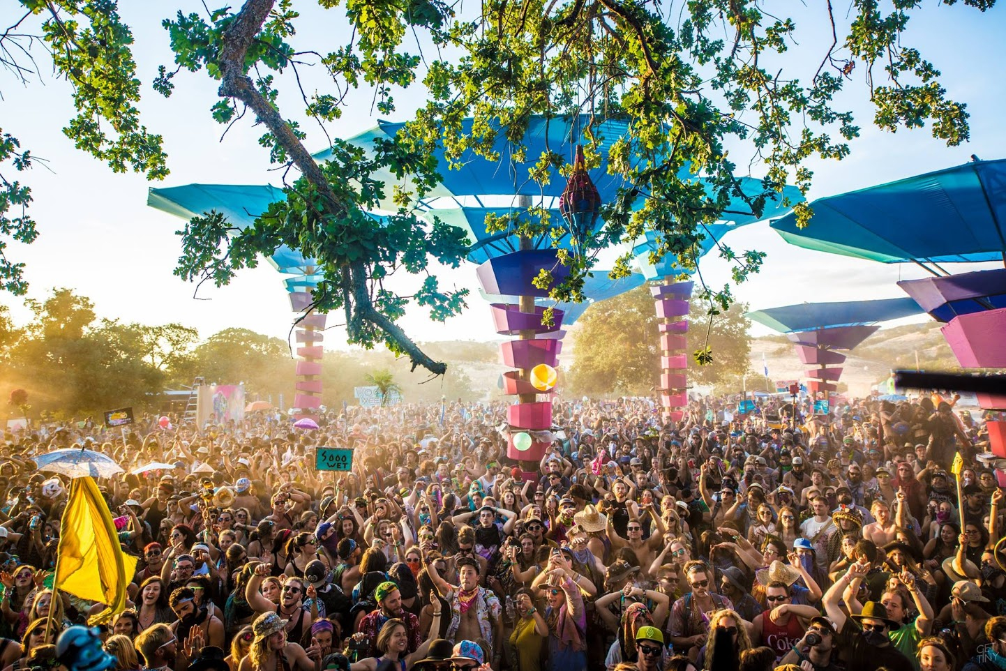 The DoLab Wants You to Boogie at the Woogie Weekend Festival