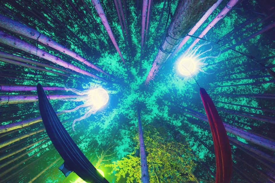 Electric Forest 2016 Dates Revealed