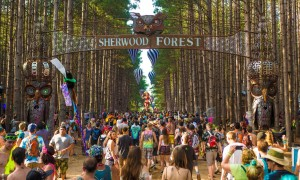 electric-forest-festival
