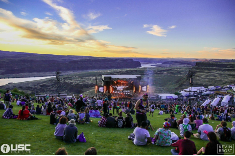 The Evolution of Paradiso, Where Digital Meets Nature