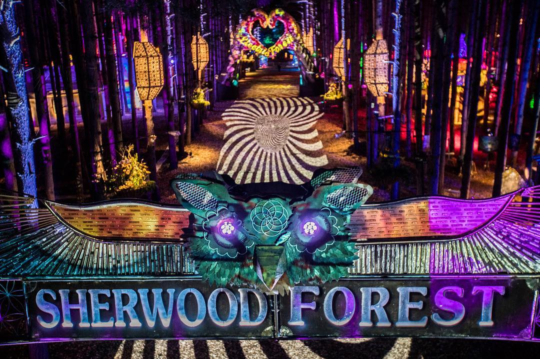 Electric Forest: The Most Mystical Weekend of the Summer (RECAP)