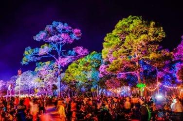 Insomniac's Okeechobee Festival Releases Stellar 2020 Lineup